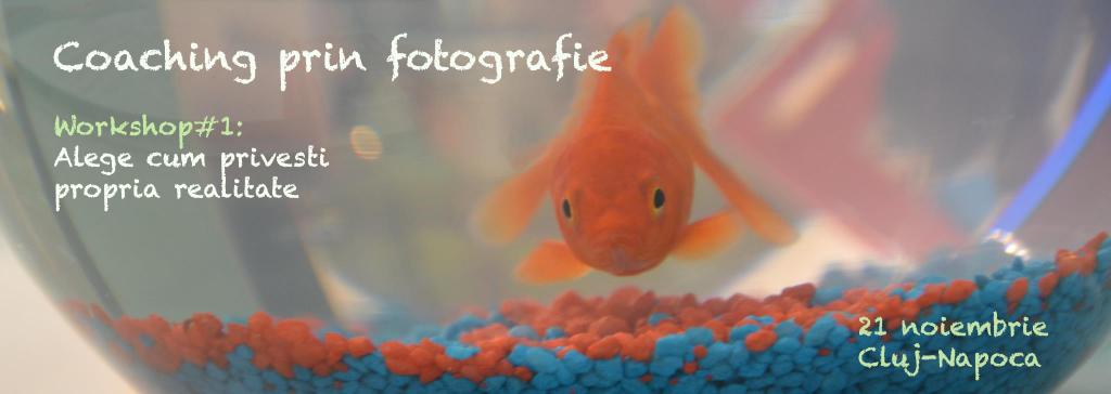 acvariu-cu-peste-banner-fb